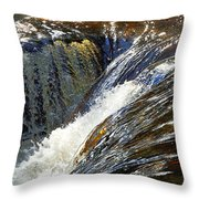 Ravenskill Falls Throw Pillow