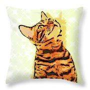 Ravi Series #7 Throw Pillow