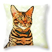 Ravi Series #8 Throw Pillow