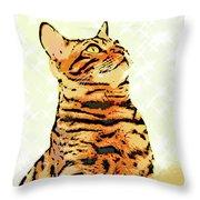 Ravi Series #9 Throw Pillow