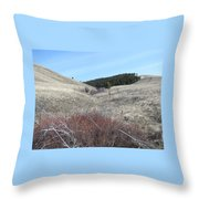 Ravine Access Throw Pillow