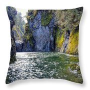 Ravine Of Color Throw Pillow
