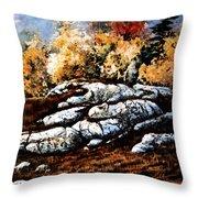 Raw North Throw Pillow