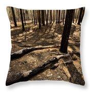 Raw Yosemite Throw Pillow