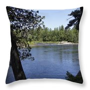 Rawdon Throw Pillow