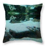 Ray Bay Throw Pillow