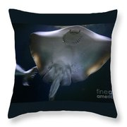 Ray Of Fun Throw Pillow
