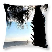 Raymonds Afternoon Sun Throw Pillow