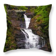 Raymondskill Falls Throw Pillow