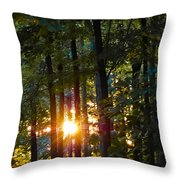 Rays Of Dawn Throw Pillow