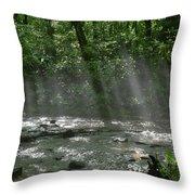 Rays Through The Trees Throw Pillow