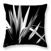 Razor Sharp Throw Pillow