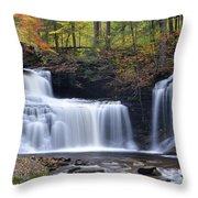 Rb Ricketts Falls Throw Pillow