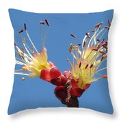 Re-awakening Throw Pillow
