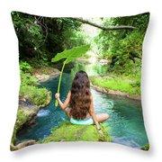 Reach Falls River Throw Pillow