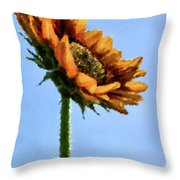 Reach For The Sun Throw Pillow