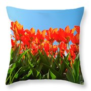 Reach For The Sun. Throw Pillow