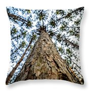 Reach New Heights Throw Pillow