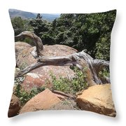 Reaching For Summits Throw Pillow
