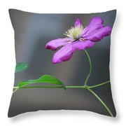 Reaching For The Fence Throw Pillow