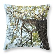 Reaching For The Sky Throw Pillow by Brandon Tabiolo - Printscapes