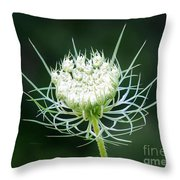 Reaching For The Stars Throw Pillow
