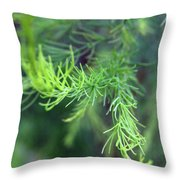 Reaching Out 2 Throw Pillow