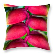 Parrot's Beak Heliconia Throw Pillow