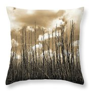 Reaching To The Sky Throw Pillow
