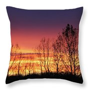 Reaching West Throw Pillow