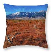 Read Fields Eastern Sierra Throw Pillow