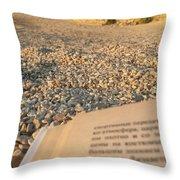 Reading A Book On Pebble Beach Throw Pillow