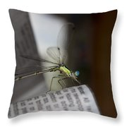 Reading The Paper  Throw Pillow