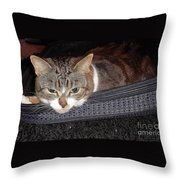 Ready For A Trip Throw Pillow