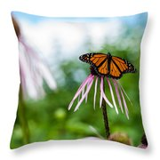Ready For Departure Throw Pillow