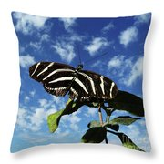 Ready For Liftoff Throw Pillow