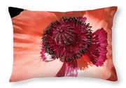Ready-for-my-close-up Poppy Throw Pillow