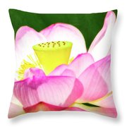 Ready For My Closeup Throw Pillow