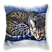 Ready For Napping Throw Pillow