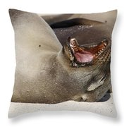 Ready For The Dentist Throw Pillow