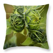 Ready For The Grand Opening Throw Pillow
