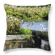 Ready For Touch Down Throw Pillow