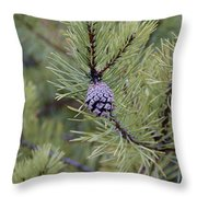 Ready To Explode Throw Pillow