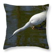 Ready..set.. Throw Pillow