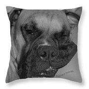 Really Comfy Throw Pillow