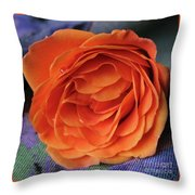 Really Orange Rose Throw Pillow