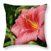 Really Pretty Blooming Pink Daylily In A Garden Throw Pillow