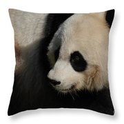 Really Up Close With The Face Of A Giant Panda Throw Pillow