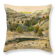 Realm Of Golden West Dakota Throw Pillow