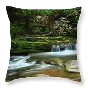 Realm Of The Fay Throw Pillow